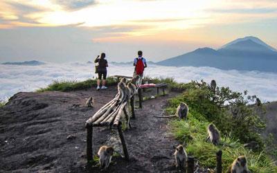 Bali Mount tain Cycling
